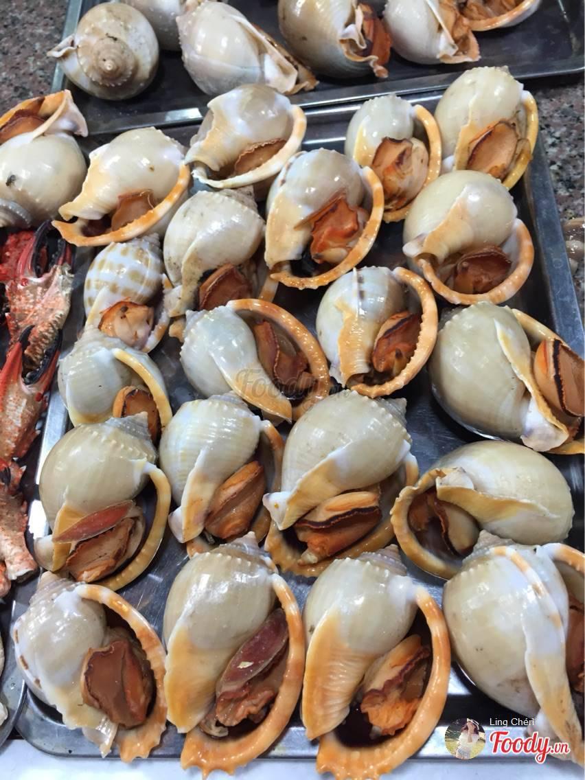 foody-khu-am-thuc-dem-vung-tau-959-635608398268883957