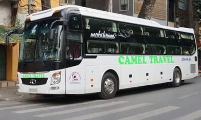 thumb_392_1494324268_camel_travel_bus_03