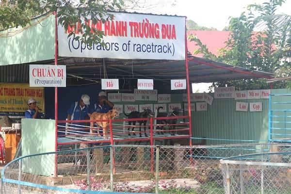 truong-dua-cho