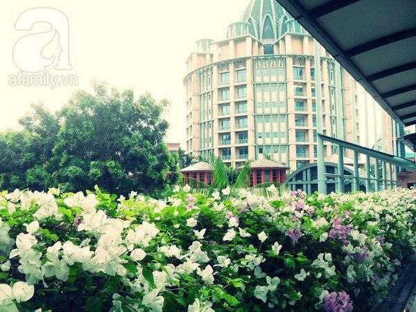 du-lich-singapore-tu-tuc-can-bao-nhieu-tien-20141201093816-1