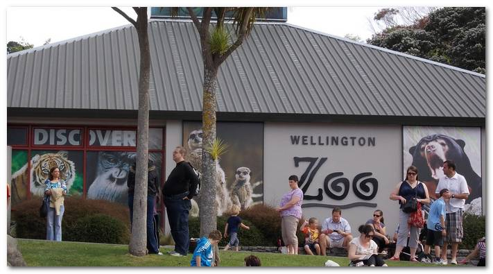 new-zealand-cac-dia-diem-ua-thich-4f653-wellington-zoo