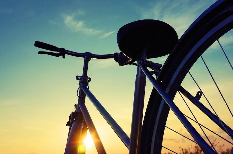 mua-hoa-anh-dao-han-quoc-2017-5752-bicycle