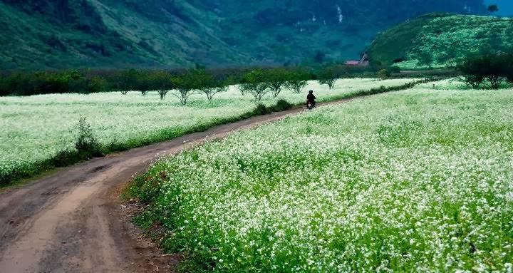 bang-gia-ve-tham-quan-cac-dia-diem-noi-tieng-nam-2017-wetrek_vn2