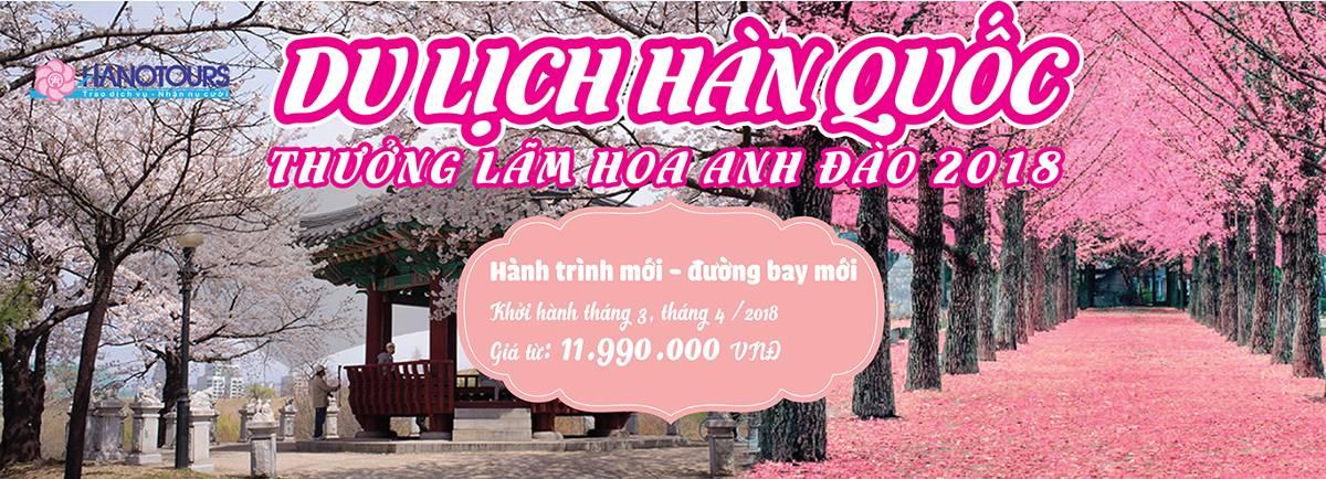 banner_han_quoc_2_01