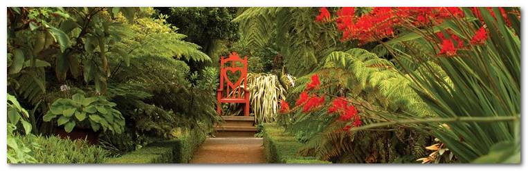 new-zealand-cac-dia-diem-ua-thich-d474d-dunedin-garden-new-zealand