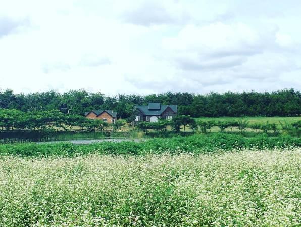 dalat-milk-farm-ivivu-9