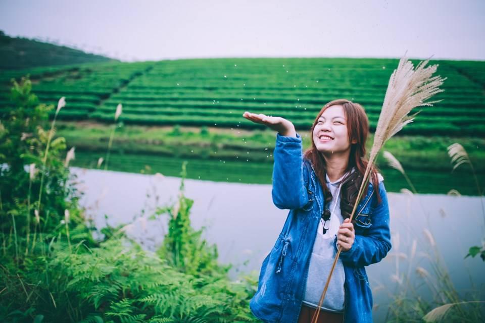 dao-che-nghe-an-diem-check-in-xanh-muot-cho-dan-phuot-hinh-3