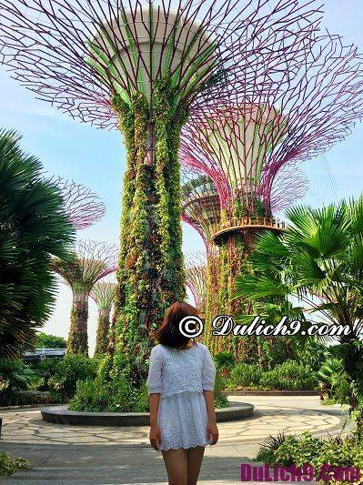 du-lich-singapore-malaysia-tu-tuc-du-lich-singapore-malaysia-4