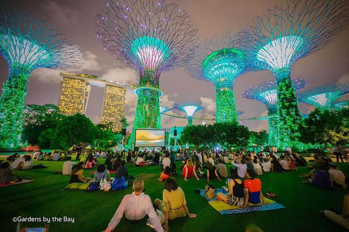 dia-diem-du-lich-singapore-gardens-by-the-bay-rhapsody