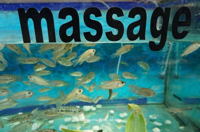 kinh-nghiem-du-lich-campuchia-2017-ho-massage-ca-v1