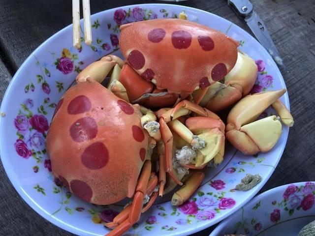review-phuot-binh-thuan-huong-dan-phuot-hoang-dao-phu-quy-cuc-chuan-chi-voi-1tr500k-5234daed636045222221072495