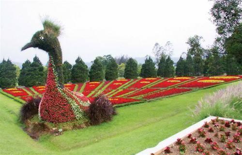 du-lich-bandung-indonesia-imageview-aspx-thumbnailid-381285