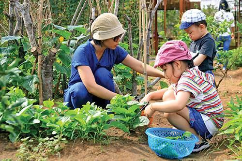 khu-du-lich-sinh-thai-fosaco---cu-chi---tphcm-khu-du-lich-sinh-thai-family-garden