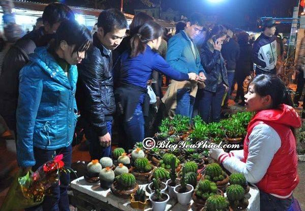 Chợ Viềng Nam định 2018: Kinh Nghiệm Phượt Nam Định: điểm ăn Chơi, đường đi Từ A-Z