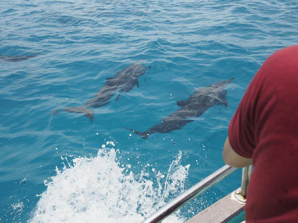 du-lich-maldives-tu-tuc-kinh-nghiem-du-lich-maldives-16