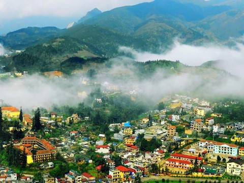 sapa_in_colors_t