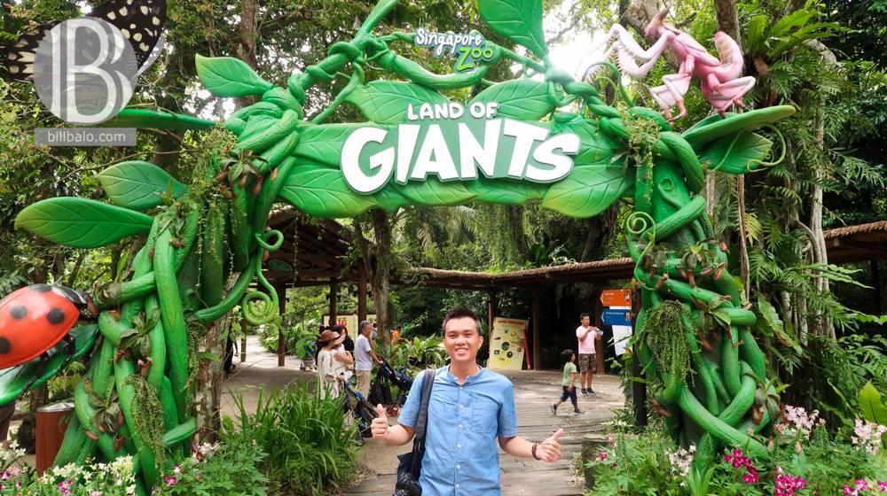 lich-trinh-di-singapore-4-ngay-3-dem-singapore-zoo