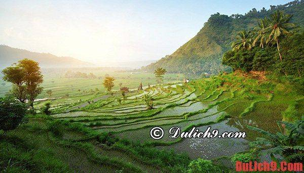 co-nen-di-du-lich-indonesia-thoi-gian-nen-di-du-lich-bali