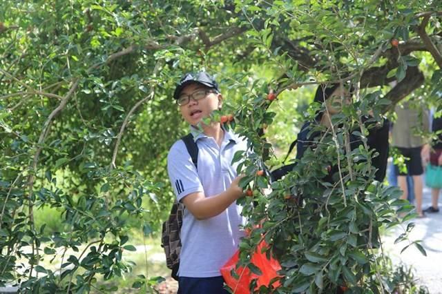 xoa-cuc-da-tai-khu-du-lich-sinh-thai-phu-an-khang-sang-di-chieu-ve-chua-toi-300k-bd9506e6636286491176575198