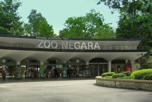 dia-diem-du-lich-malaysia-zoo-negara